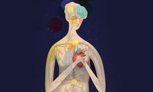Порок сердца психосоматика