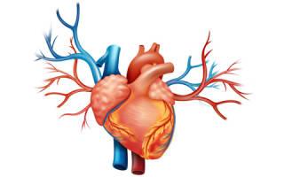 Легочно сердечная недостаточность причина смерти
