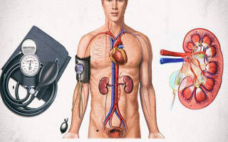 Почечная гипертензия лечение
