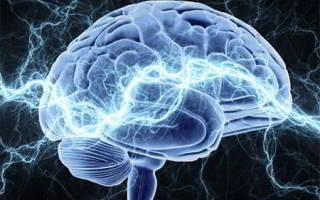 Профилактика ишемии головного мозга